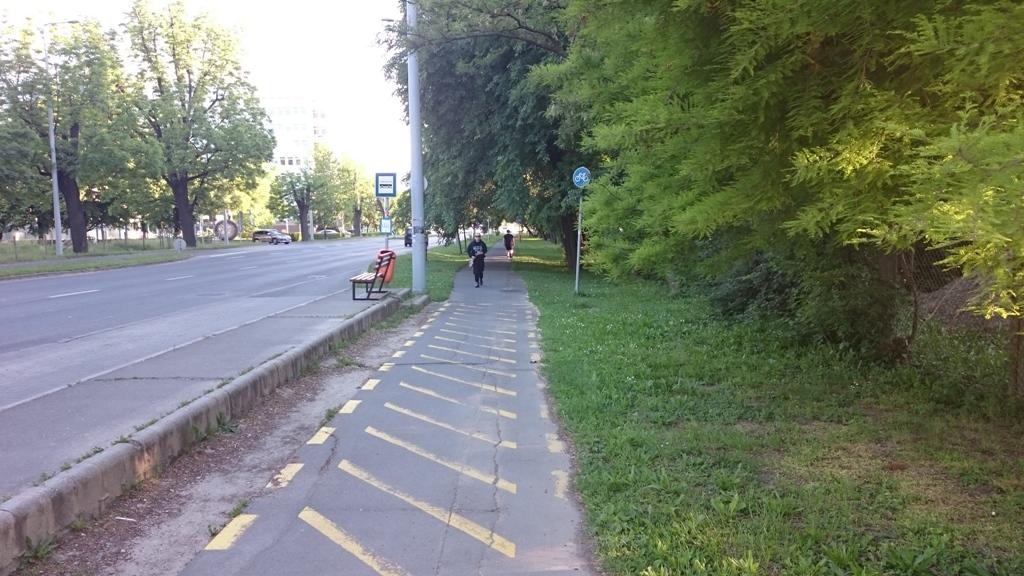 Ugyanis itt egy megálló van. Itt tehát csak gyalogolni lehetne, és a gyalogosoknak telefestették az utat sárga csíkokkal.