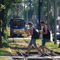 A 4-es vonalra akkor lesz pénz, ha megépül a tramtrain Szabadkáig