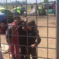Migráns gyerek megvágta, magyar kormány gyógyítja