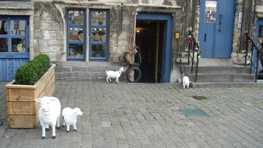 Birkák vagyunk? Áldozati bárányok? Talán egyik sem!