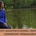 Bojkott, karaktergyilkosság, öninterpelláció - kormányzati próbálkozások Fót ügyében