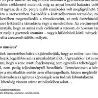 Parlamenti frakciók és Homo Musicus az Országos Kompetenciamérésen?