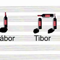 Ének-zene óra