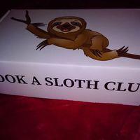 Hamarosan olvashatjátok a véleményemet a novemberi @bookaslothclub csomagról!
