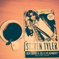 Steven Tyler könyvének eddig minden oldala kellemes meglepetés.