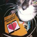 Napi bölcsesség: Mindig legyen veled könyv és macska!