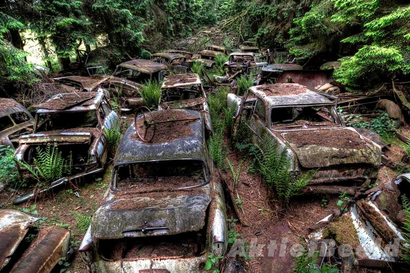 chatillon_car_graveyard_belgium_ritebook_in-007.jpg