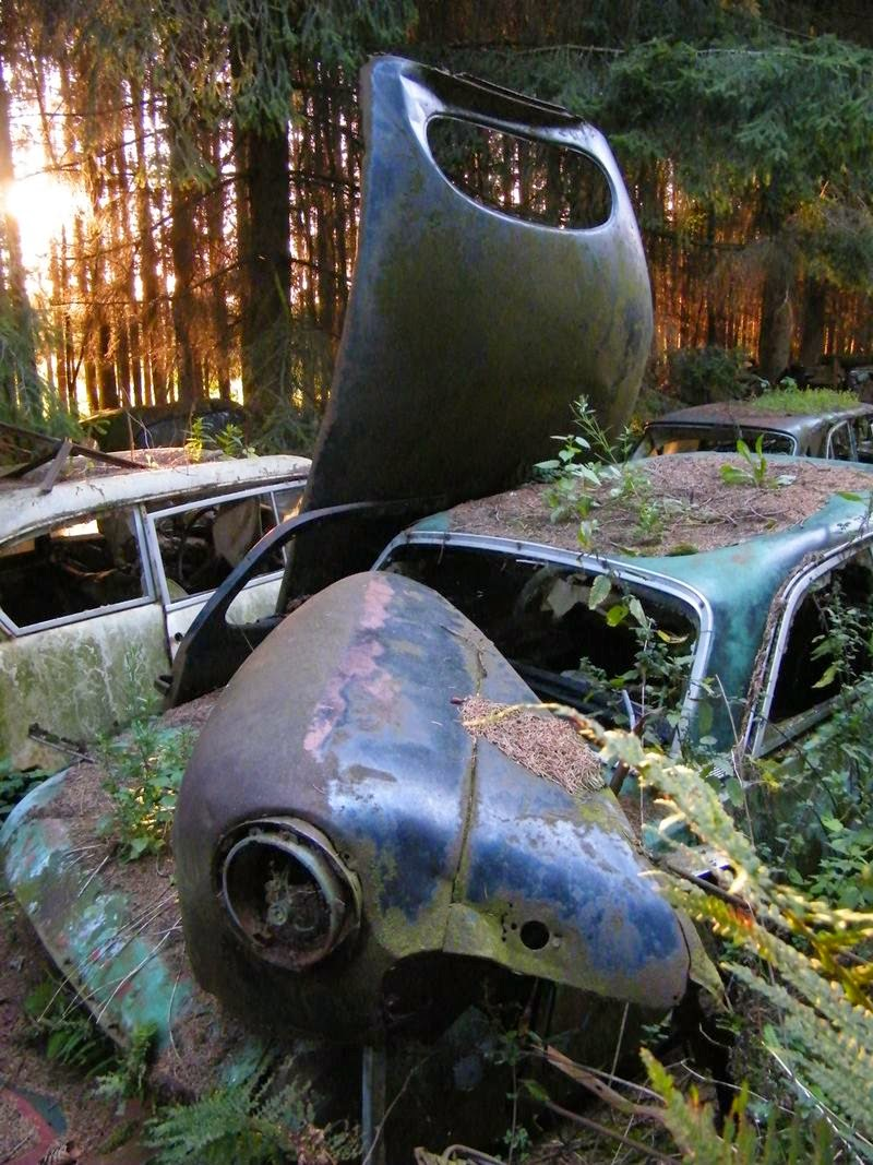 chatillon_car_graveyard_belgium_ritebook_in-008.jpg