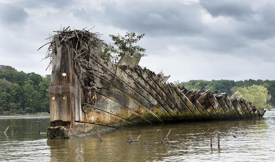 mallows-bay-ship-graveyard--maryland-brendan-reals.jpg