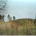 Békavár-Egy letűnt kor emléke a Bajai-csatorna nádasában