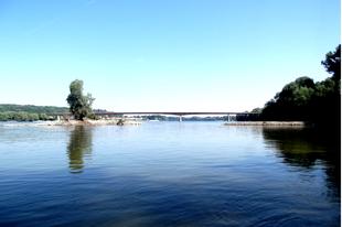 Horgászkalandok a Dunán: A Rajter