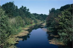 A Kígyós-patak és a Mosztonga