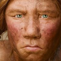 Termékenységük csökkenése is okozhatta a neandervölgyiek kihalását