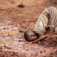Két tucat fotó az élet árnyékos oldaláról