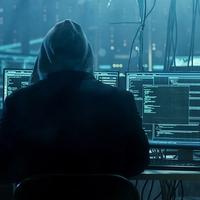 Megbüntették a magyar programozót, aki rámutatott egy óriáscég hibájára