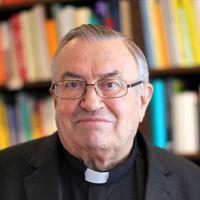 Lehmann bíboros: volna mit tanulnia az egyháznak a fociból