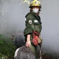 A hadsereget is bevetik az erdőtüzek ellen