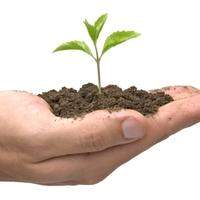 Mitől növekszik egy keresztény közösség?