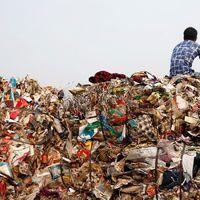 Ételt hulladékért - indiai kezdeményezés az éhezők megsegítésére