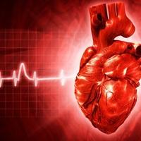 Az infarktusos betegek gyógyszerszedését segítő program indul