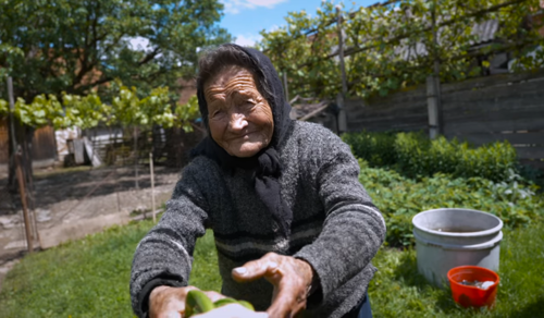 Rózsika néni csak 93 éves, de neki is van mit adnia