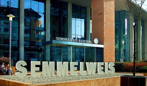 Nyári egyetemmel indul a Semmelweis Egyetem jubileumi tanéve