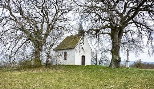 Templomokat újított fel a Pécsi Egyházmegye