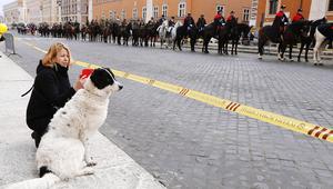 Állati áldást osztottak a Vatikánban