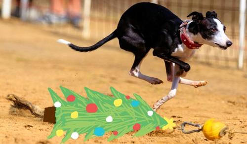 Hova tűnik a fékpedál karácsonykor?