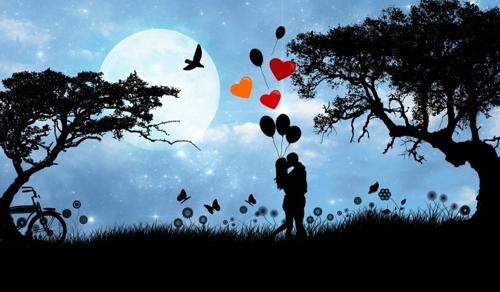 A szerelem nem háziállat, hanem egy nemes vad