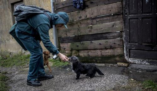 Az állatvédelem a gyermekvédelemmel kezdődik