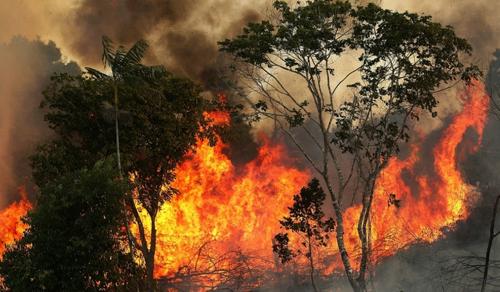 Több ezer erdőtűz az Amazonas régióban