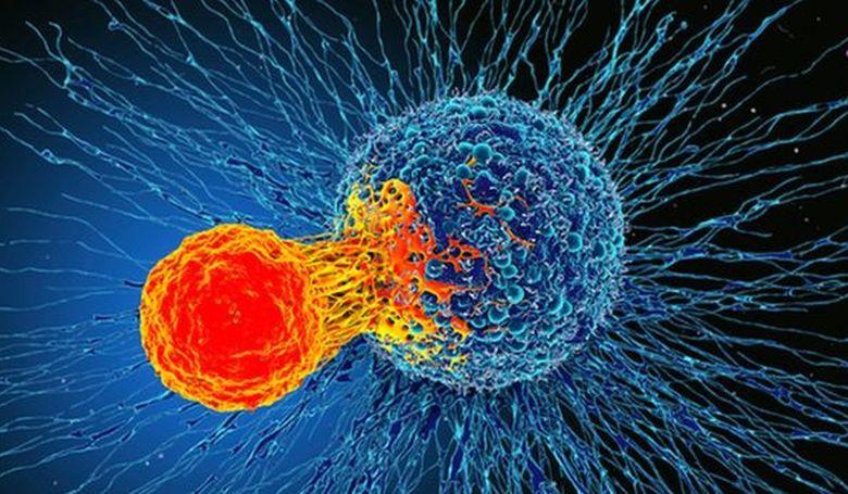 Szinte minden ráktípust gyógyíthat egy új felfedezés