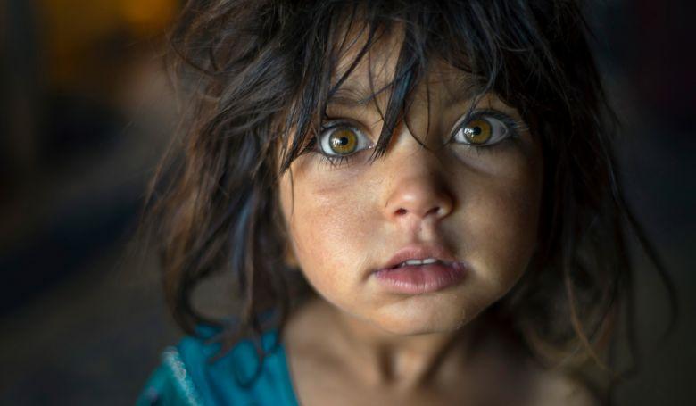 20 kép a világ legnagyobb fotópályázatáról