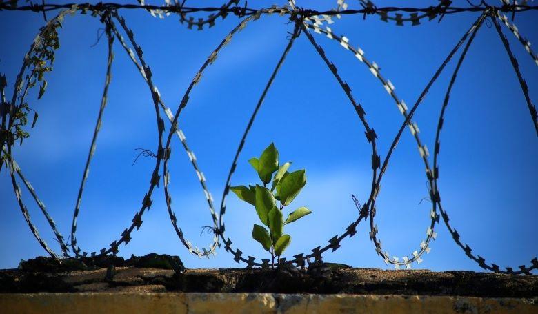 Ajándékozz egy ismeretlen fogvatartottnak!