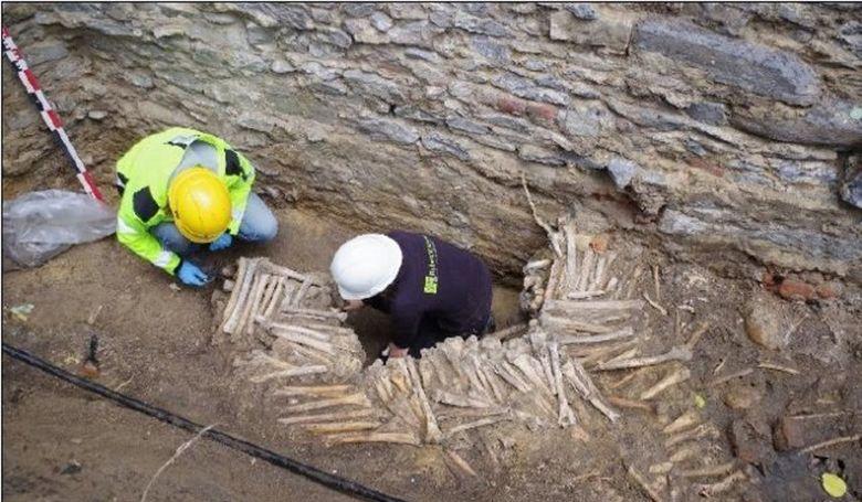Emberi csontokból készült falakra bukkantak a genti székesegyház alatt