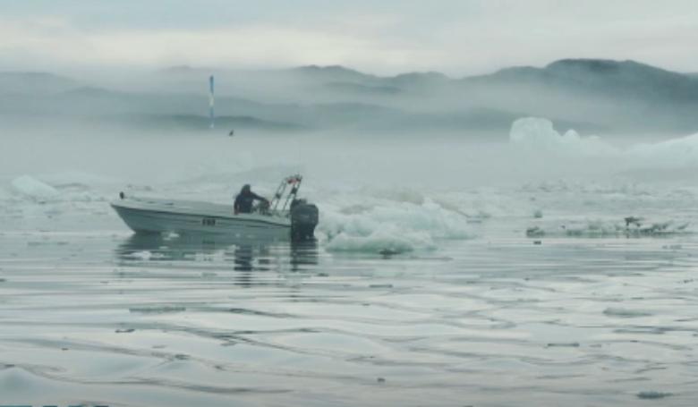 Új halfajok jelentek meg Grönland vizein
