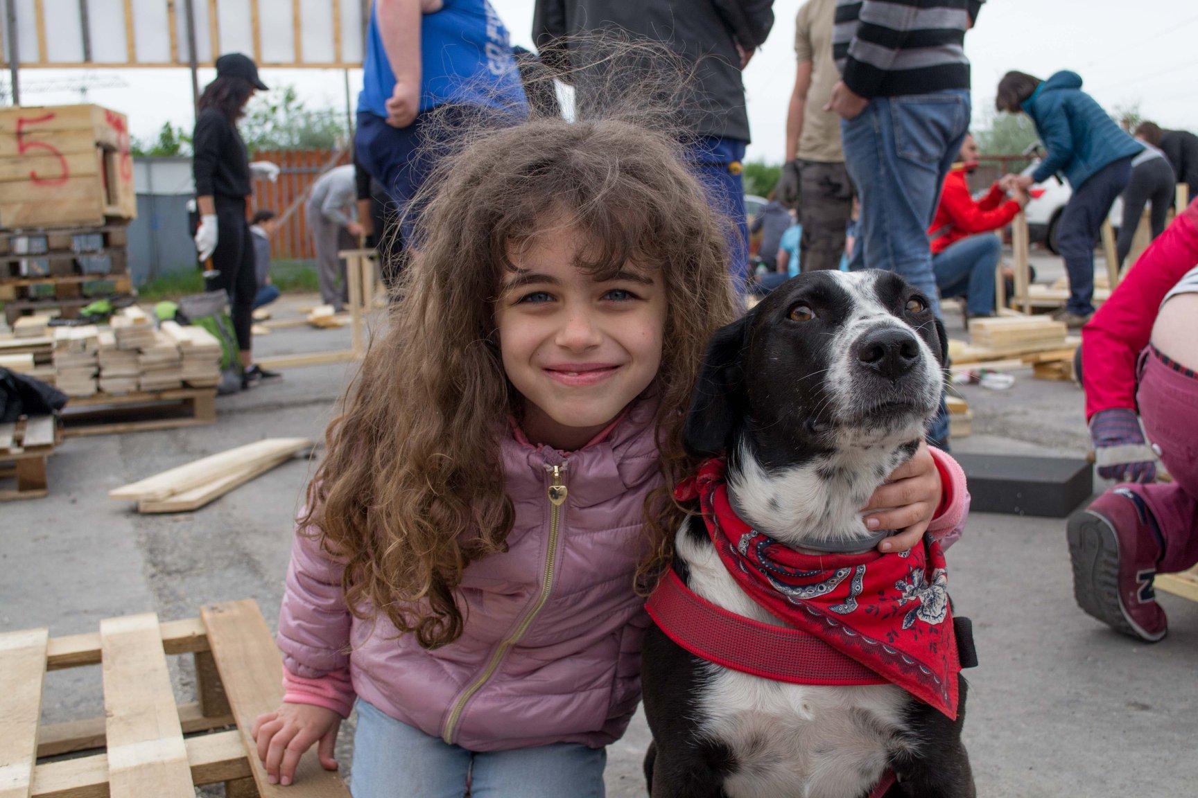 Kutyaházépítéshez kér segítséget a Hangya Közösség