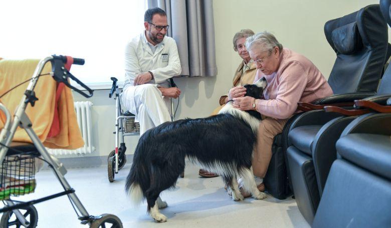 Terápiás kutyák segítik a mozgásszervi rehabilitációt az egri kórházban