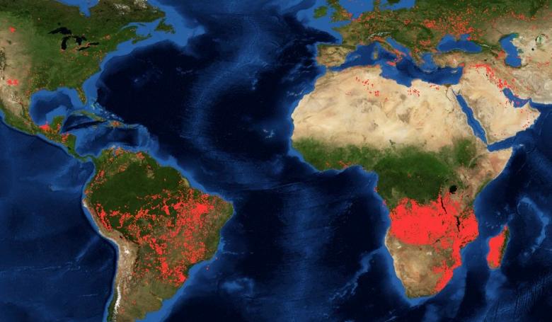 A világ erdőtüzei üzenik: érdemes figyelni Ferenc pápa szavára