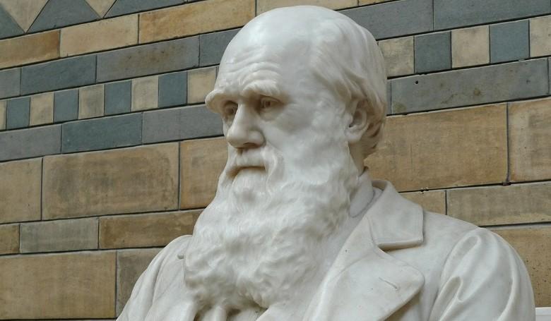 Darwin elmélete az élet megjelenéséről kutatók szerint pontosításra szorul