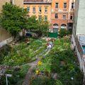 Közösségi kert: egy hely, ahol szabadnak és hasznosnak érezhetjük magunkat