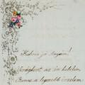 191 éve született Szendrey Júlia