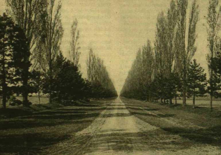 vasarnapi_ujsag_1909.jpg