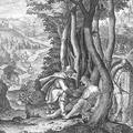 Pünkösd utáni 12. vasárnap (Szent István király nyolcada)