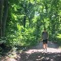 Két láb, négy kód, egy okostelefon és az erdő