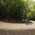 Pilis Bike: szarvasként suhanni az erdőben biciklivel