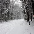 Március 15-i hóvihartúra a Bükkben