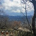 Zöldmáli delta: Budapest ismeretlen zöldfolyosója