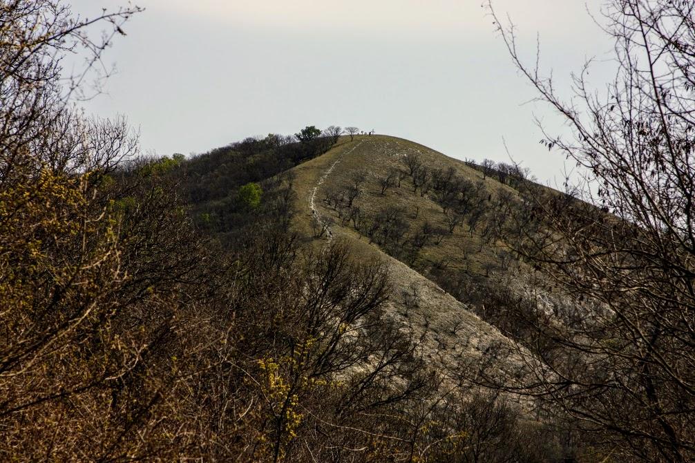 A Meszes-hegy kapaszkodója